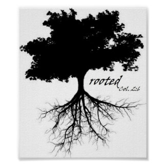 """Poster (Tree """"rooted"""" w/ Col. 2:6)"""