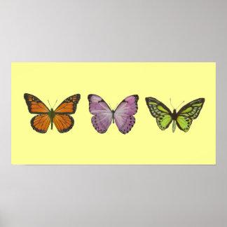 Poster triple de la mariposa horizontal