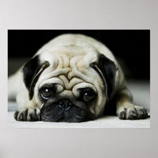 Poster triste del perro de perrito del barro
