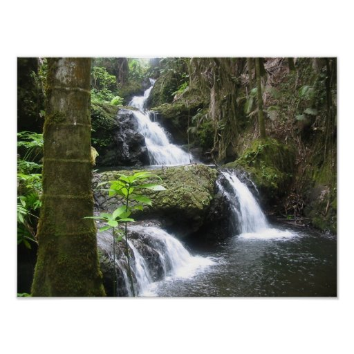 Poster tropical de la cascada (paisaje) 16x12