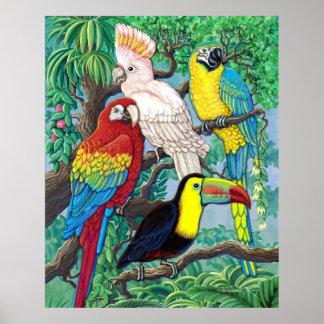Poster tropical de los pájaros