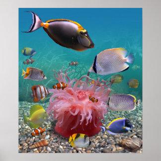 Poster tropical de los pescados