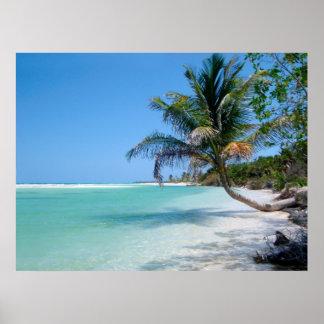 poster tropical del cielo de la playa A PARTIR del