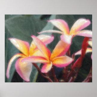 Poster tropical hawaiano del Plumeria