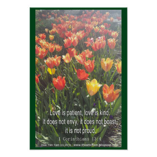 Poster - Tulips photo with Bible Verse