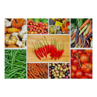 Poster vegetal colorido del collage