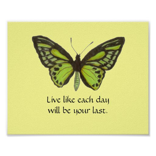 Poster verde de la mariposa