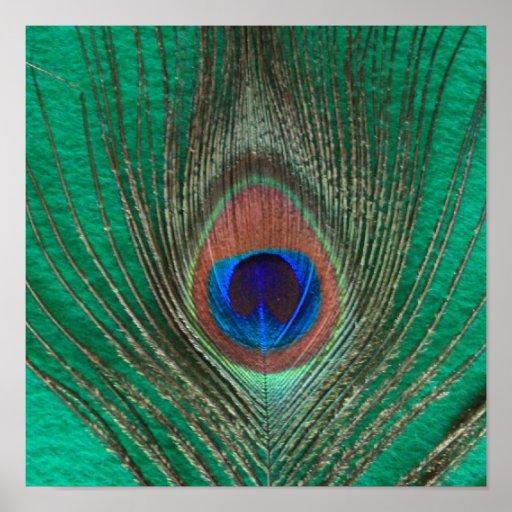 Poster verde de la pluma del pavo real póster