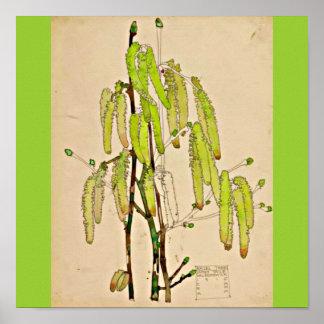 Poster-Vintage-Charles Rennie Mackintosh 13