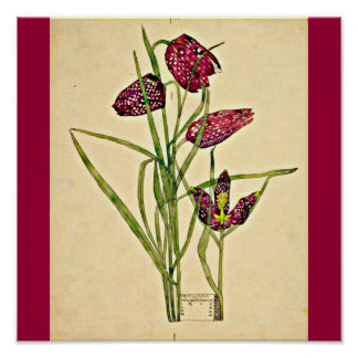 Poster-Vintage-Charles Rennie Mackintosh 20 Póster
