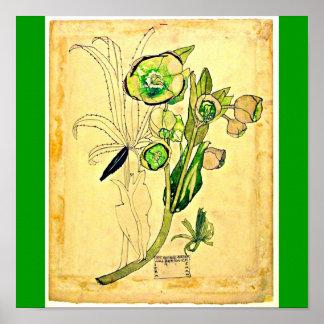 Poster-Vintage-Charles Rennie Mackintosh 21 Póster
