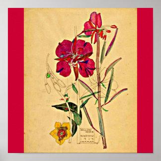 Poster-Vintage-Charles Rennie Mackintosh 28 Póster
