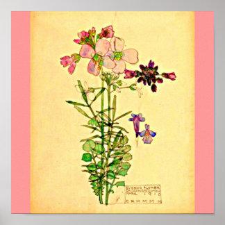 Poster-Vintage-Charles Rennie Mackintosh 29 Póster