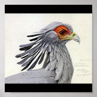 Poster-Vintage Chicago Art-Abyssinian Birds 18