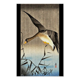 Poster-Vintage Japanese Art-Ohara Koson 17 Poster