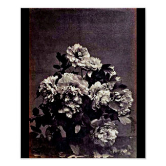 Poster-Vintage Photography-Charles Aubry 26 Poster