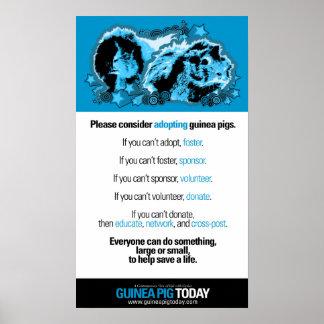 Poster voluntario de las ideas - conejillo de Indi