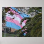 Poster - vuelo de la bandera del transexual en San