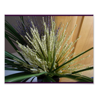 Poster - White Heather and Grasses