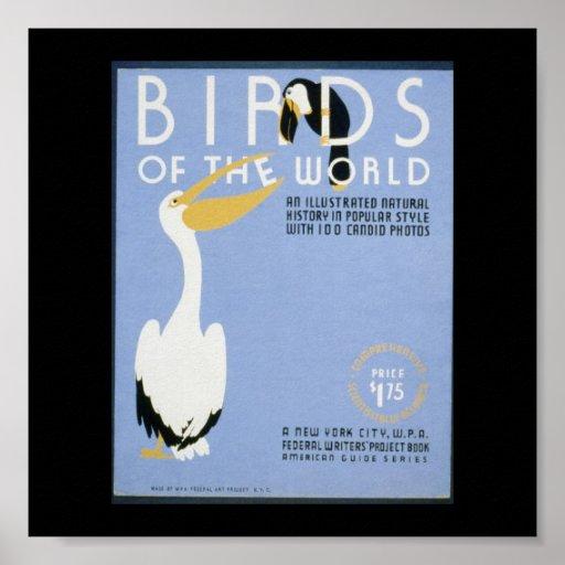 Poster-WPA-Pájaros del mundo Póster