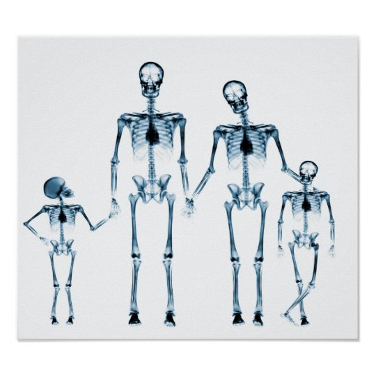 POSTER - X-RAY SKELETON FAMILY WHITE BLUE