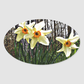 Posterized Daffodils Oval Sticker