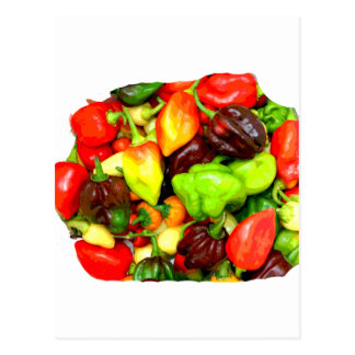 Posterized Hot Pepper Assortment Picture Postcard