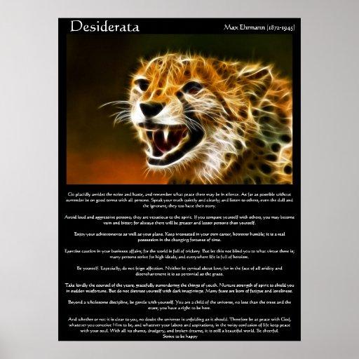 Posters 13 de los desiderátums