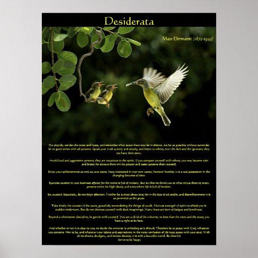 Posters 3 del colibrí de los desiderátums