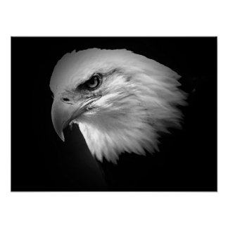 Posters americanos de Eagles de la impresión del p