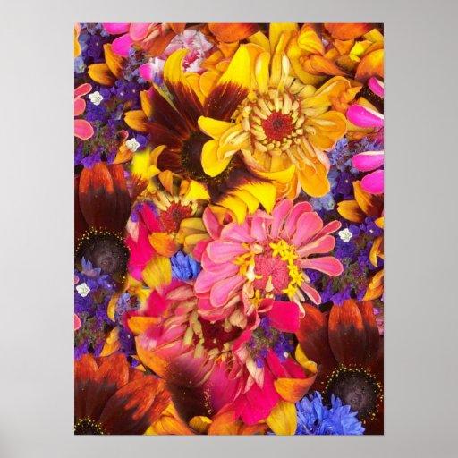 Posters coloridos de las flores