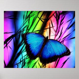 Posters de las opciones del arte 39 de la mariposa