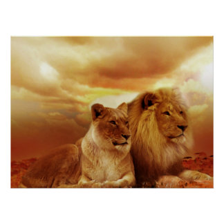 Posters de los pares del león