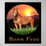 posters del caballo