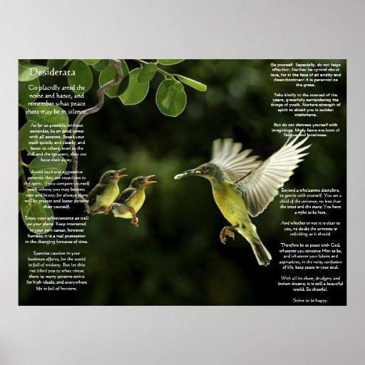 Posters del colibrí de los desiderátums