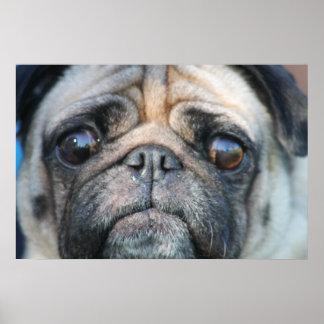 Posters del perro del barro amasado