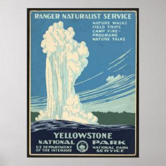 Posters del vintage, géiser del parque nacional de