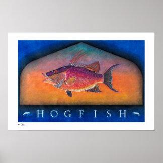 Posters, impresiones y marcos del Hogfish