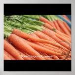 Posters orgánicos de la zanahoria