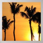 Posters tropicales de la puesta del sol