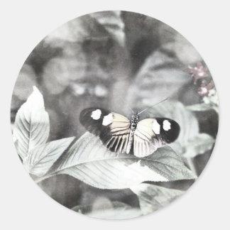 Postman Butterfly Classic Round Sticker