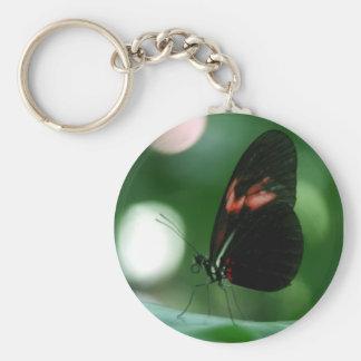 Postman Butterfly II Basic Round Button Keychain