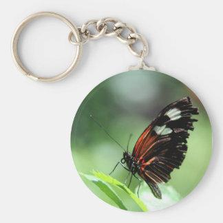 Postman Butterfly III Basic Round Button Keychain