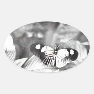 Postman Butterfly Oval Sticker