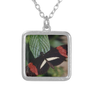 Postman Butterfly Square Pendant Necklace