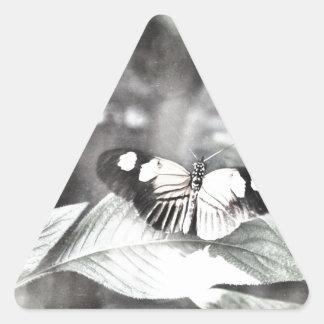 Postman Butterfly Triangle Sticker