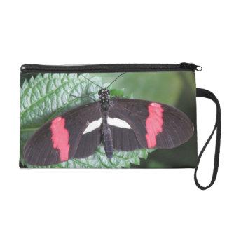 Postman Butterfly Wristlet