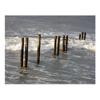 Posts in the Sea Postcard
