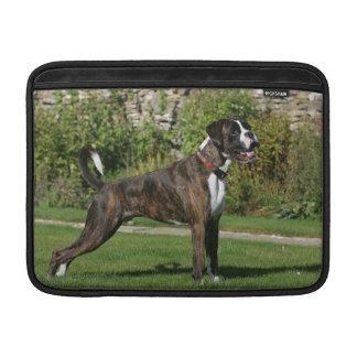 Postura Brindle de la exposición canina del boxead Fundas Para Macbook Air