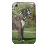 Postura Brindle de la exposición canina del iPhone 3 Case-Mate Coberturas